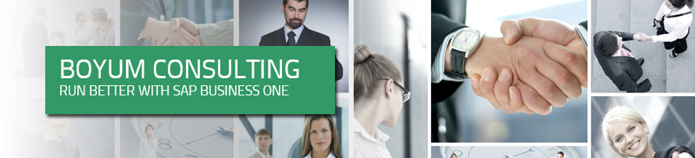 SAP Business All in One Banner_Boyum IT
