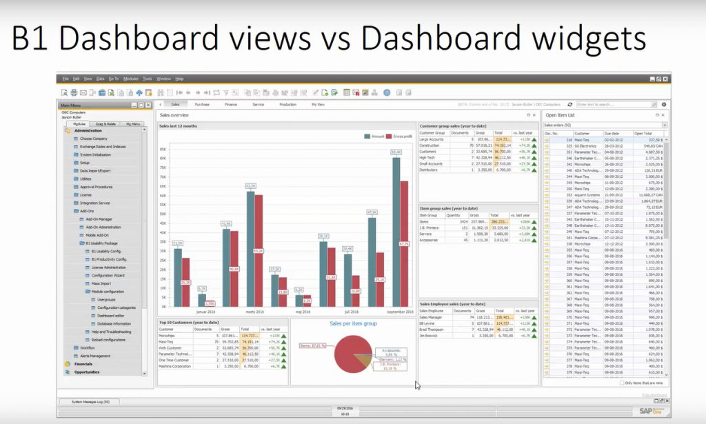 b1-dashboard_sap-business-one